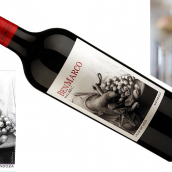 BenMarco Malbec 2014   Susana Balbo Wines