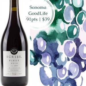 Scribe Pinot Noir Sonoma County 2016